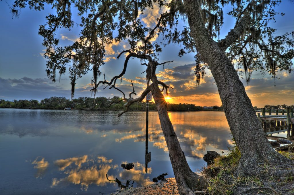 Photo of lake in Parrish, Florida. The sun is setting in the background and can be seen through the spaces between tree branches that sit on the bank of the lake.